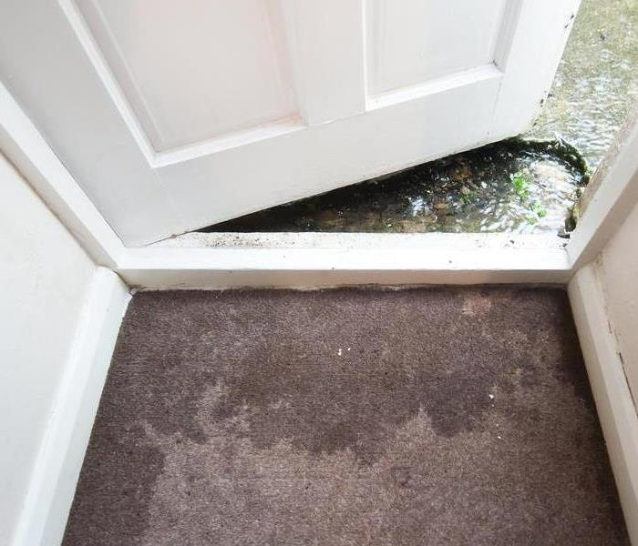 Wet carpet by doorway.